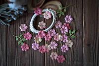 Набор цветов Незабудки 2
