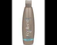 Nouvelle Normalizing Сleanser Shampoo 250 мл Шампунь для жирных волос с экстрактом крапивы