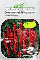 Семена  Люпин многолетний красный 0,3гр сорт Галерея