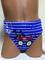 Плавки детские, подростковые плавательные. BH 3103 электрик  Teres, фото 1