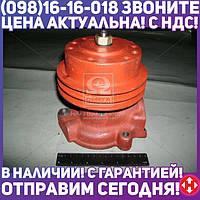 Насос водяной Д 245 ЗИЛ, ГАЗ, ПАЗ (пр-во БЗА) 245-1307010-А1-01