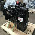 Двигатель  Case IH Magnum 310, фото 2