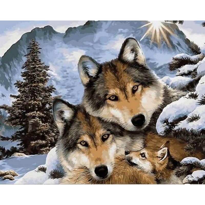 Картина по номерам Семья волков 40 х 50 см (VP1023)