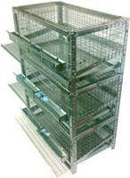 Клетка для перепелки-несушки на 60 голов