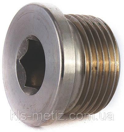 Пробка (заглушка) для труб резьбовая цилиндрическая с фланцем и внутренним шестигранником DIN 908  от М8 - М36, фото 2