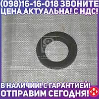 ⭐⭐⭐⭐⭐ Вкладыш пальца реактивного КАМАЗ наружный сталь 45, холодного выдавливания (производство  Прогресс)  5511-2919040