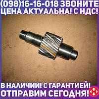 ⭐⭐⭐⭐⭐ Шестерня ведущая цилиндрическая Z=15 (производство  КамАЗ)  5320-2402110-40