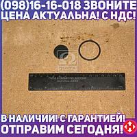 ⭐⭐⭐⭐⭐ Ремкомплект клапана двухмагистрального (пр-во ПААЗ) 100.3562009