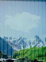 Цветная фотопечать на жалюзи и рулонных шторах под заказ покупателей производство и продажа