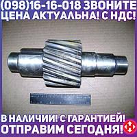 ⭐⭐⭐⭐⭐ Шестерня ведущая цилиндрическая Z=15 Евро-1 (производство  КамАЗ)  53205-2402110-40