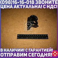 ⭐⭐⭐⭐⭐ Прижим колеса задний МАЗ (пр-во МАЗ) 5335-3101051-01