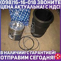 ⭐⭐⭐⭐⭐ Гильзо-комплект ЕВРО-2 (ГП+Кольца) (общая головка ) <короткая> гильза Поршень Комплект (производство  ЯМЗ)  7511.1004005-50