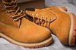 Зимние ботинки  на мехуTimberland 6 Premium Boot, рыжие (30651) размеры в наличии ► [  40 41  ], фото 2