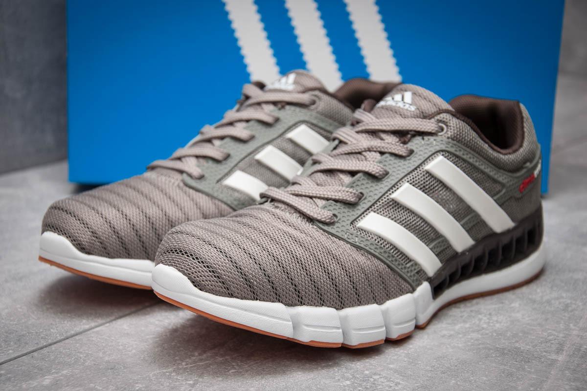 Кроссовки мужские Adidas Climacool, серые (13085) размеры в наличии ► [  44 (последняя пара)  ]