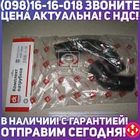 ⭐⭐⭐⭐⭐ Патрубок радиатора МТЗ 2 штуки ( верхний+нижний ) (Дорожная Карта)  DK-1351
