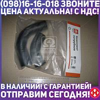 ⭐⭐⭐⭐⭐ Патрубок радиатора МТЗ 2 штуки ( верхний+нижний ) СТАНДАРТ (Дорожная Карта)  DK-1351-01
