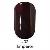 Гель-лак 037 Gel Polish 6 мл  NAOMI (темно-коричневый сливовый, эмалевый)