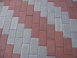Тротуарная плитка - Кирпич 60мм, фото 2