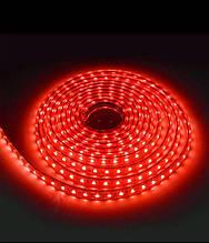 Светодиодные ленты MOD-3528 ( красный  цвет )