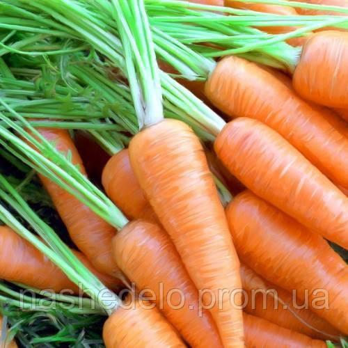 Вікторія морква 400 шт. Леда Агро