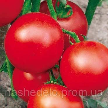 Эфемер томат 0,2 гр. Семена Украины