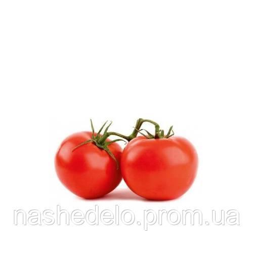 Багіра томат 10 шт. Леда Агро