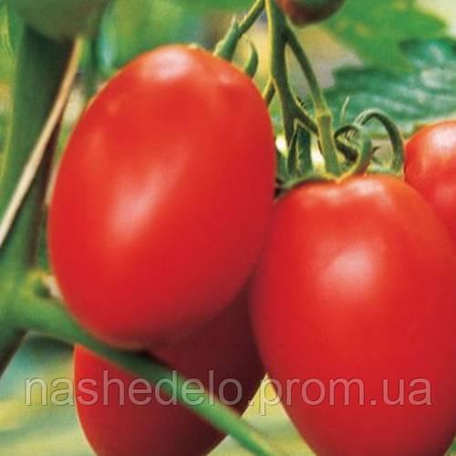 Яки томат 20 шт. Леда Агро