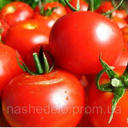 Волгоградский 595 томат 3 г. Vinel