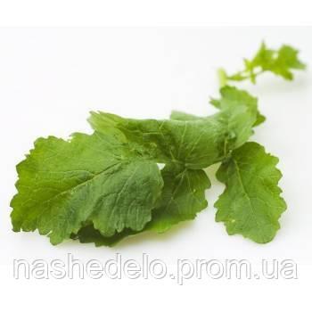 Горчица салатная 1 гр.Семена Украины
