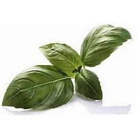 Зеленый базилик  0,5 гр.Семена Украины