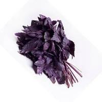 Опал базилик фиолетовый 0,3 гр. Семена Украины