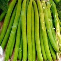 Зоренька 20 гр. гигант фасоль кустовая зеленая  Семена Украины