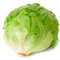 Айсберг салат хрустящий 1 гр. Семена Украины