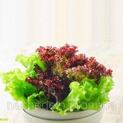 Балконний салат суміш 0,5 гр. Насіння України