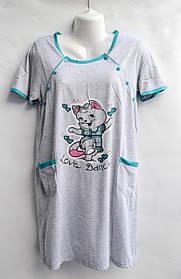 Ночная рубашка оптом 100%Cotton (44-50) D99 -33064