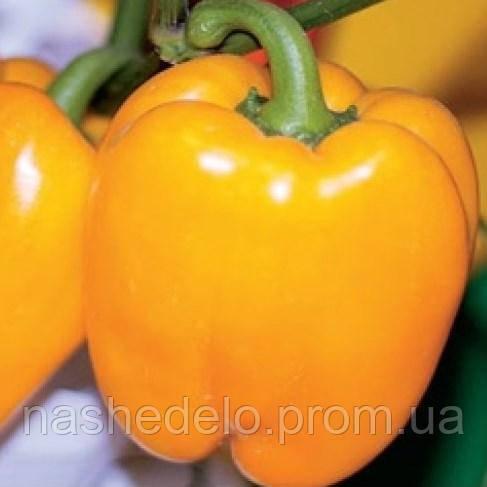 Золотой юбилей 0,3 гр. перец сладкий Семена Украины
