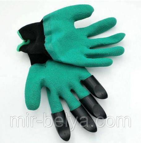 1533688250_w640_h640_4772__nie_gloves_fotografii.jpg