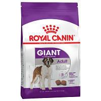 Royal Canin (Роял Канин) Giant Adult для взрослых собак очень крупных размеров старше 18/24 мес, 15кг