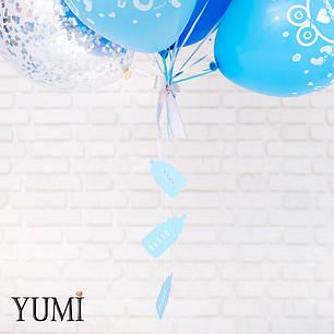 Связка из воздушных шаров на выписку из роддома для мальчика, фото 2