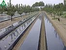 Плівка мульчують чорна SOTRAFA 30 мкм-1,2х1000 м, фото 2
