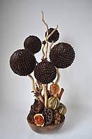 Кофейное дерево в кокосовой скорлупе на 5 шаров