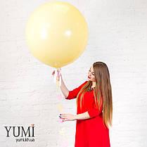 Нежный гелиевый шар-гигант с гирляндой для девочки, фото 3