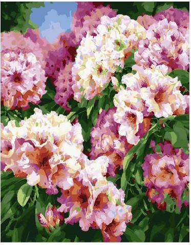 Картина по номерам Садовые пионы, 40x50 см., Brushme