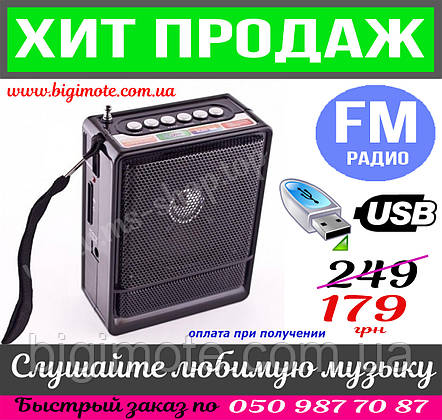 Радиоприёмник, радио, фм, приемник,приёмник, NNS-047,качественный,ФМ приемник,фм,USBподарок, фото 2