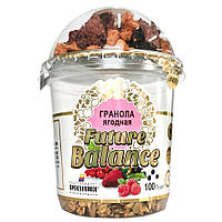Гранола Spektrumix FUTURE BALANCE ягодная, 100 г (стаканчик), мюсли, сухой завтрак без сахара