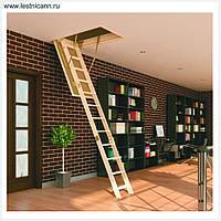 Чердачные лестницы по супер цене