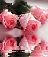 Алмазная мозаика на ПОДРАМНИКЕ 50 х 40 см Мои любимые розы (арт. TN072) , фото 1