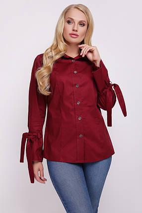 Блуза женская Агата бордо 52, фото 2