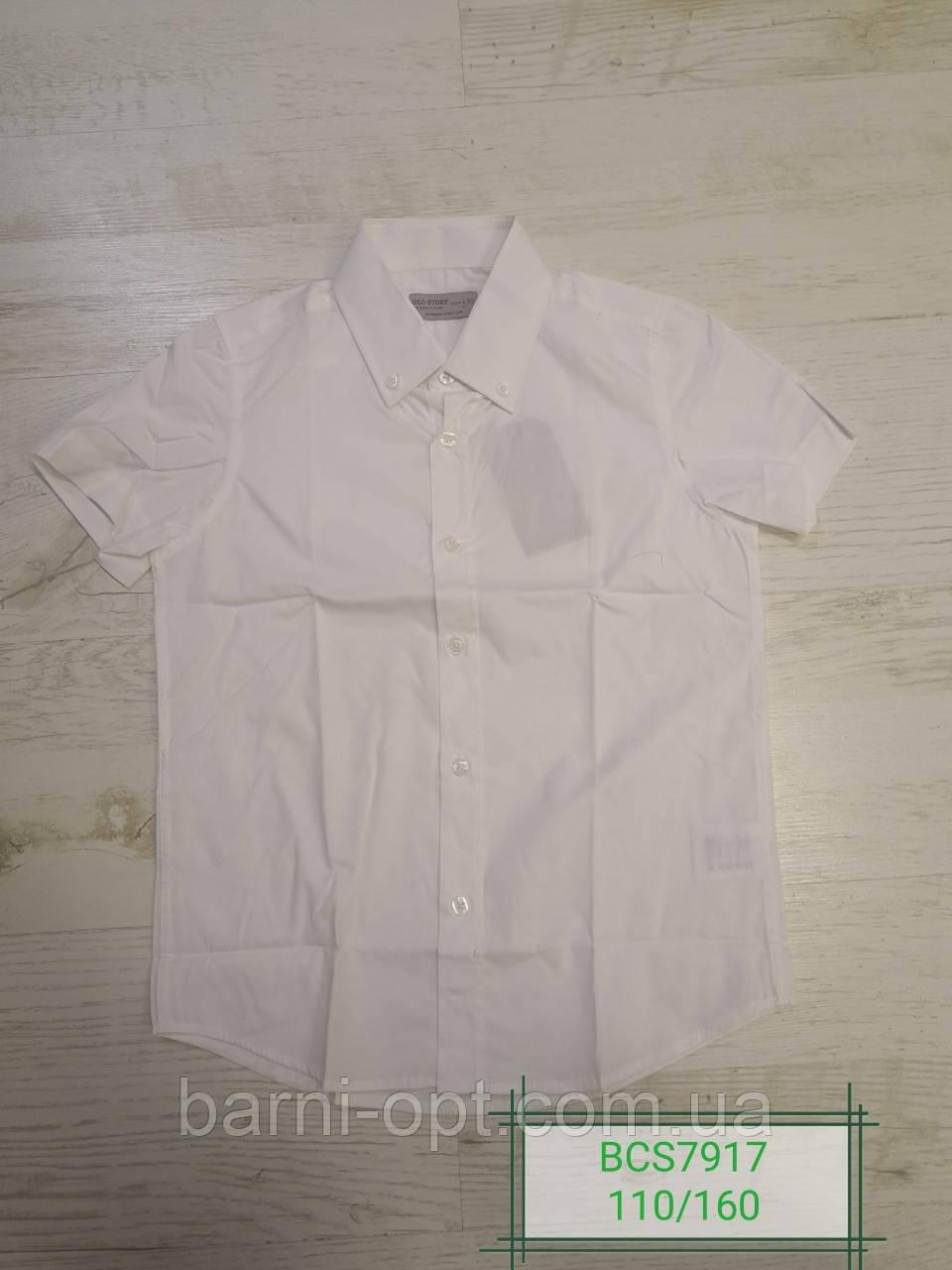 Рубашки для мальчиков оптом, Glo-Story,  в остатет 110  150.