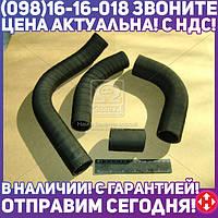 ⭐⭐⭐⭐⭐ Патрубок радиатора ГАЗ 3110 ( двигатель 402) 4шт. (пр-во г.Волжский) 3110-1303000-02